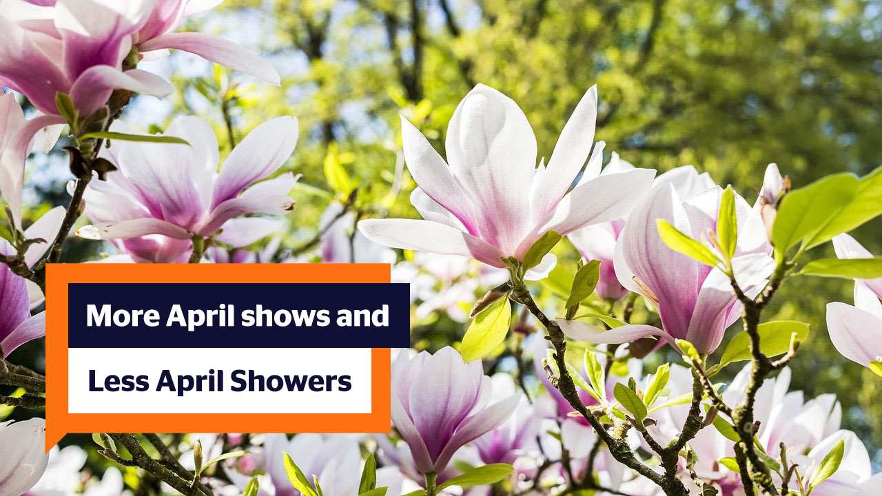 "Photo of Magnolias and a speech bubble with the text ""More April Shows and Less April Showers"" (Photo by FelixMittermeier from Pixabay)"
